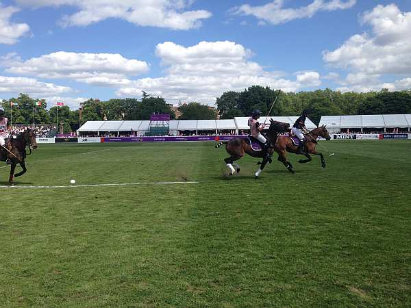 Polo in the Park - players