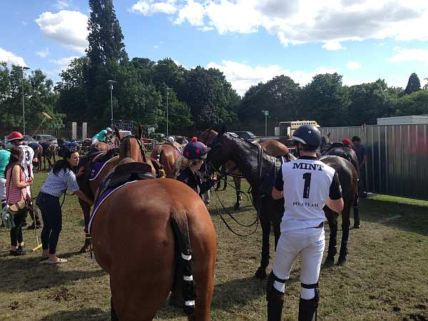 Polo in the Park - polo players
