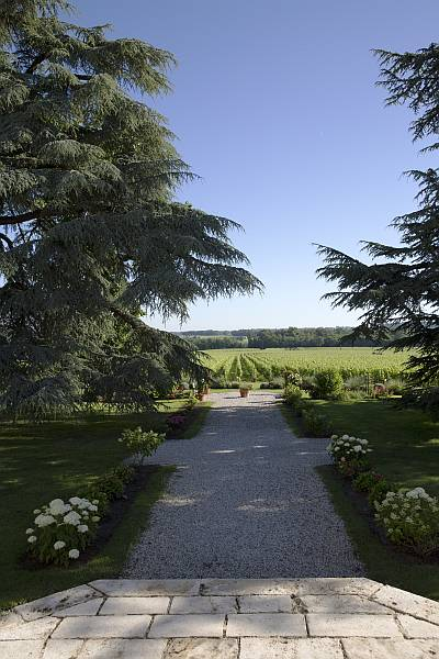 La Belle France, Magrez Luxury Wine Experience - Towards the vines - Chateau Fombrague