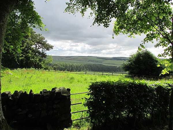 Cranshaws Castle, luxurious Scottish getaway - Looking over the hedge