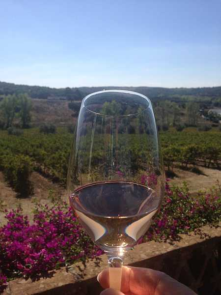 Travel to Portugal's Alentejo to experience rugged luxury - Herdade da Ravasqueira wine glass and vines
