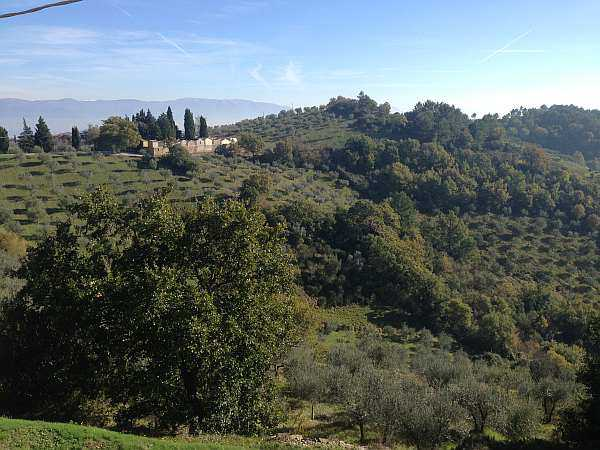 My beautiful love affair with Umbria - The rolling hills, view from Collemancio is an outlying administrative division of the municipality of Cannara