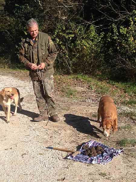 My beautiful love affair with Umbria - Urbani Tartufi, dogs loving the truffle hunting