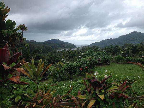 Tahiti tropical lush flora